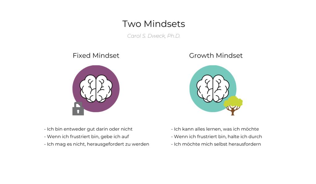 Mindset - Diese zwei Mindsets kannst du haben
